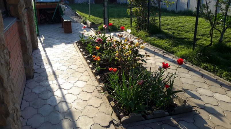 Рабатка с цветами