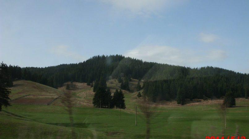 Красивые луга в горах