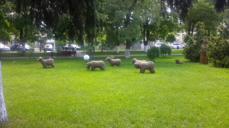 Скульптуры овец на газоне