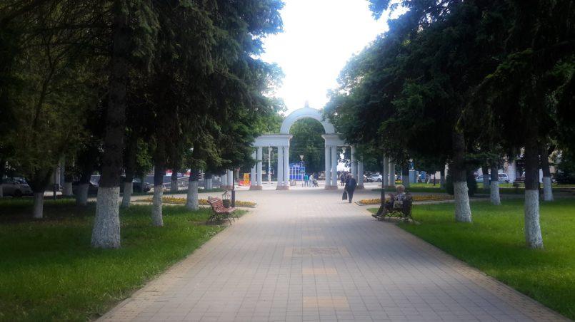 Красивая аллея в парке