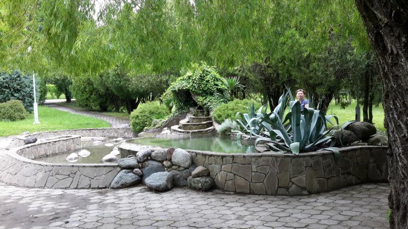 Агава у фонтана