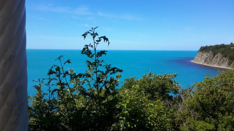 Зелень листвы и синь моря