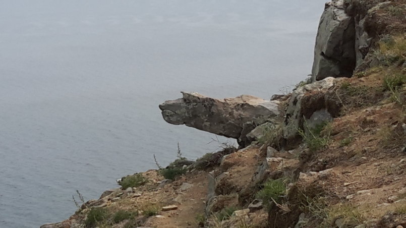 Камень в виде животного